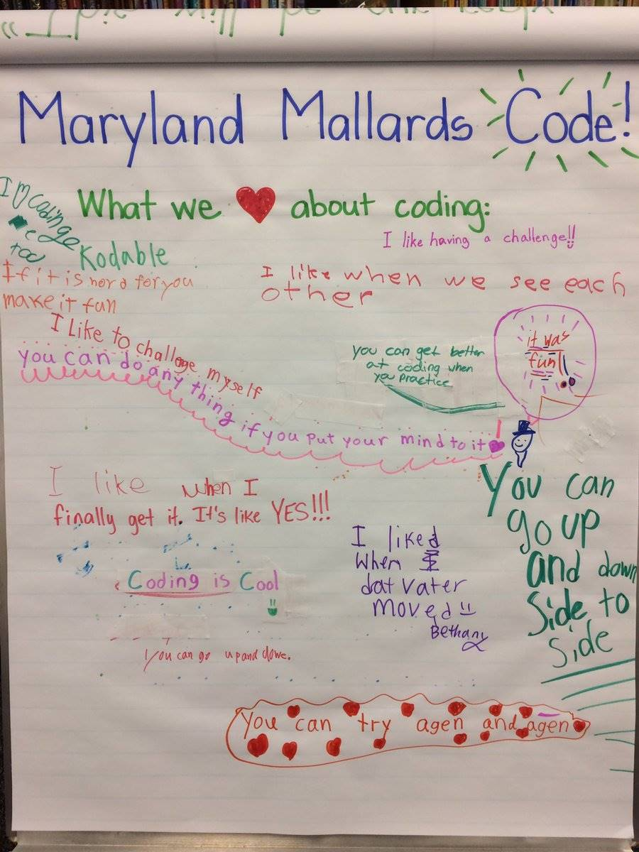 Mallards Learn Coding