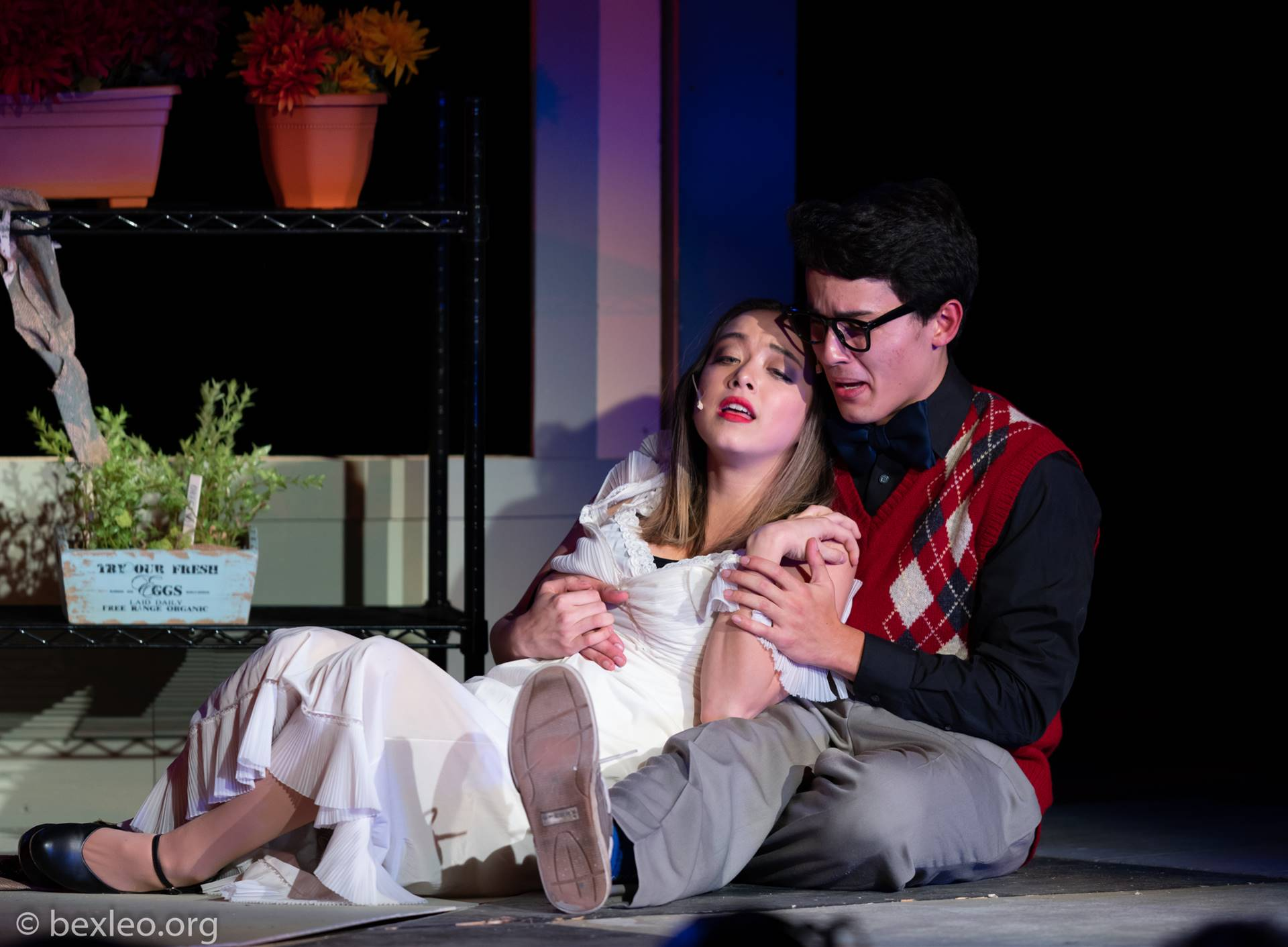 Photo from Little Shop of Horrors