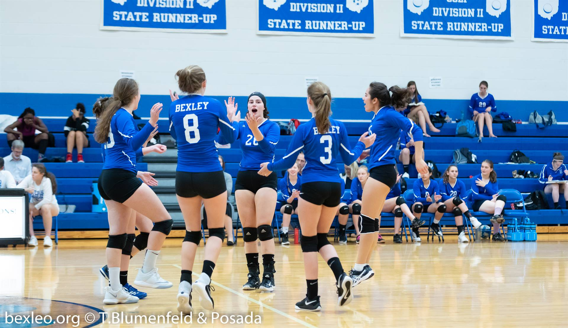 Volleyball players celebrating a point