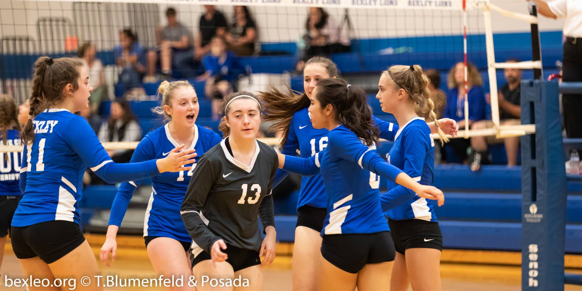 Volleyball players celebrate a point and get ready for the next one