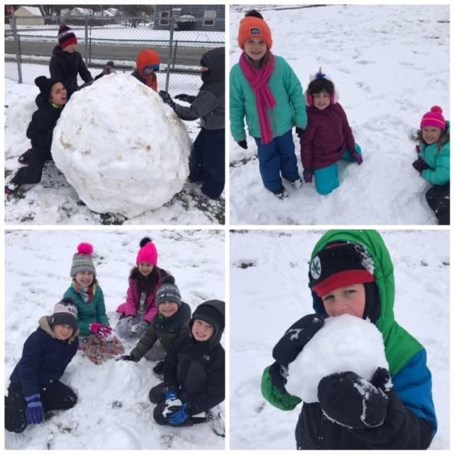 PBC Snowballs